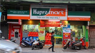 Government expects to gain nearly one trillion dong from Hapro's IPO