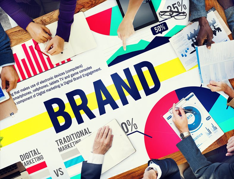 Enterprises in the Triangle: Customer – Information – Brand