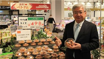 Vietnamese lychees sold out in Japan despite high price