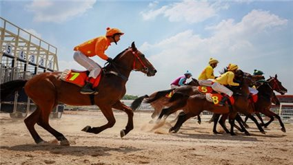 Prime Minister passes $420 million racecourse project in Hanoi