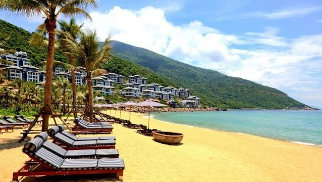 All projects on Son Tra Peninsula, Da Nang to be inspected