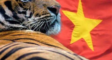How can Vietnam become Asia's new tiger?
