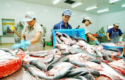 Seafood export increased sharply in the first half of 2017