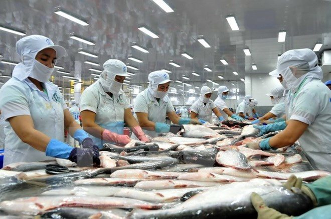 U S  inspection threatens Vietnam catfish exports | E TheLEADER