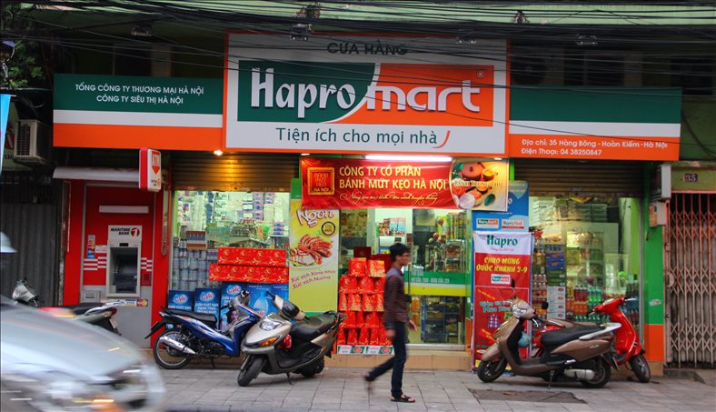 Hapro becomes the acquisition target of BRG Group