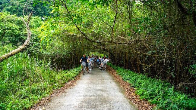 Cat Ba Archipelago: Vietnam's secret hideaway 2
