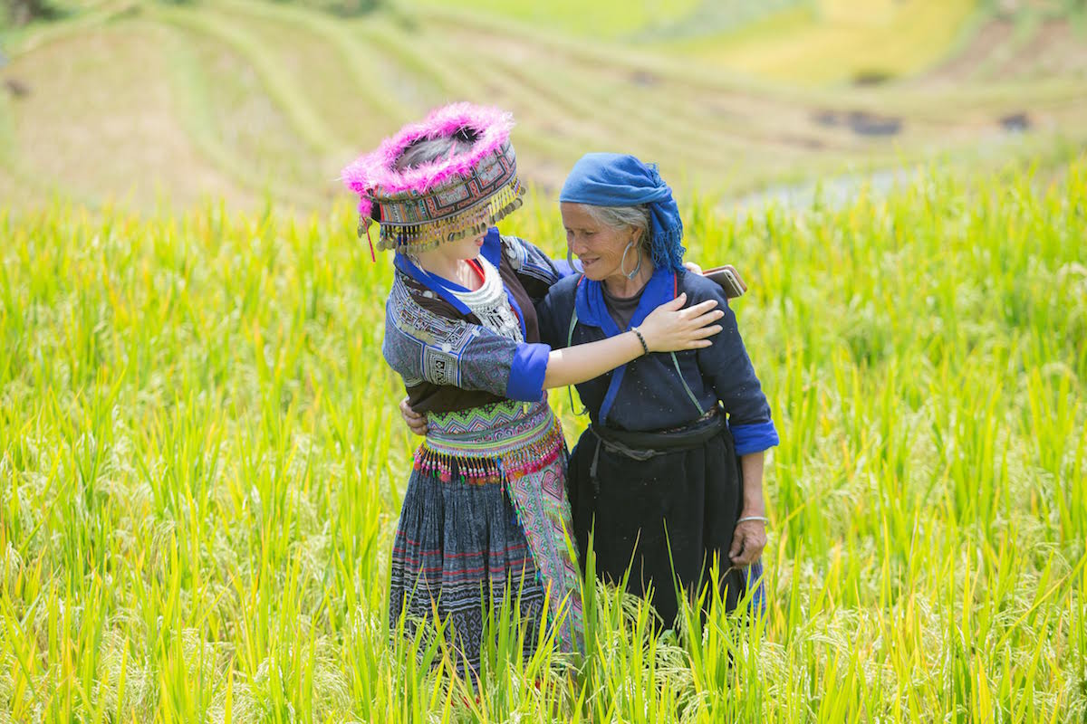 The stunning sight of rice harvest in Mu Cang Chai, Vietnam 6